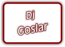 Dj Goslar