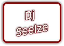 dj seelze