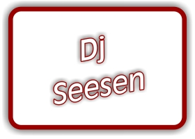 dj-seesen