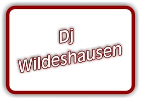 dj wildeshausen